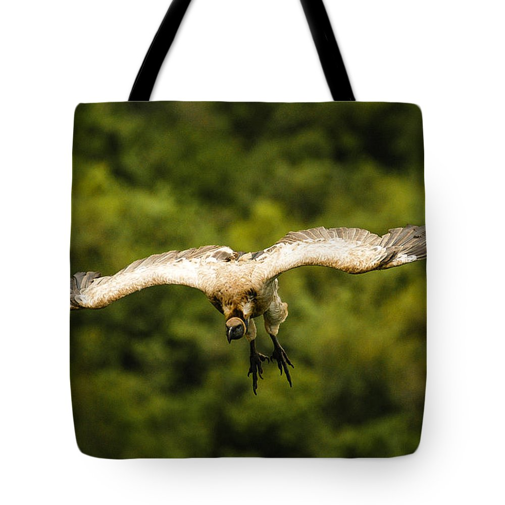 Action Tote Bag featuring the photograph White Flight by Alistair Lyne