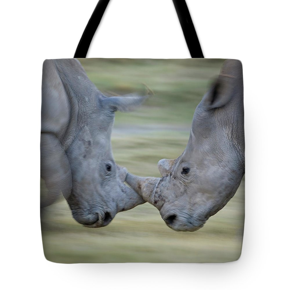 Mp Tote Bag featuring the photograph White Rhinoceros Ceratotherium Simum by Ingo Arndt