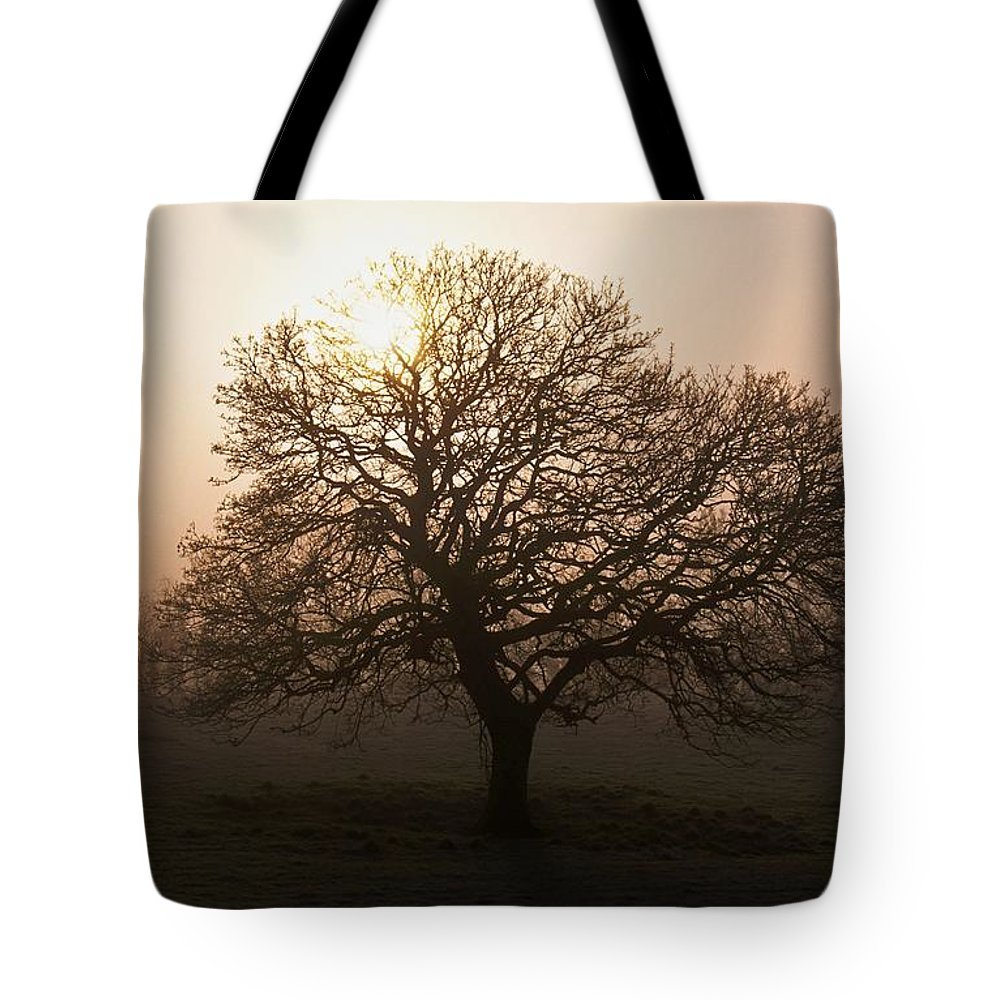 County Donegal Tote Bag featuring the photograph Winter Tree On A Frosty Morning, County by Gareth McCormack