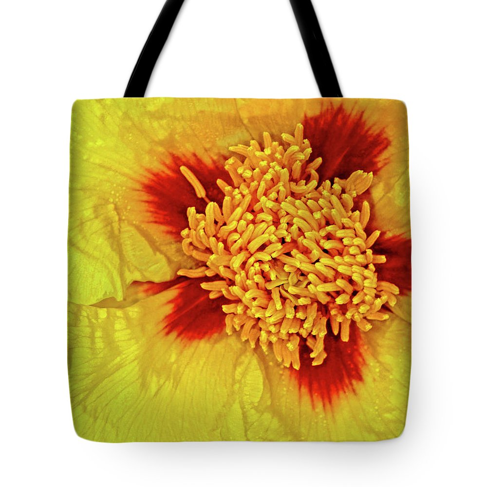 Peony Tote Bag featuring the photograph Yellow Peony by Dave Mills