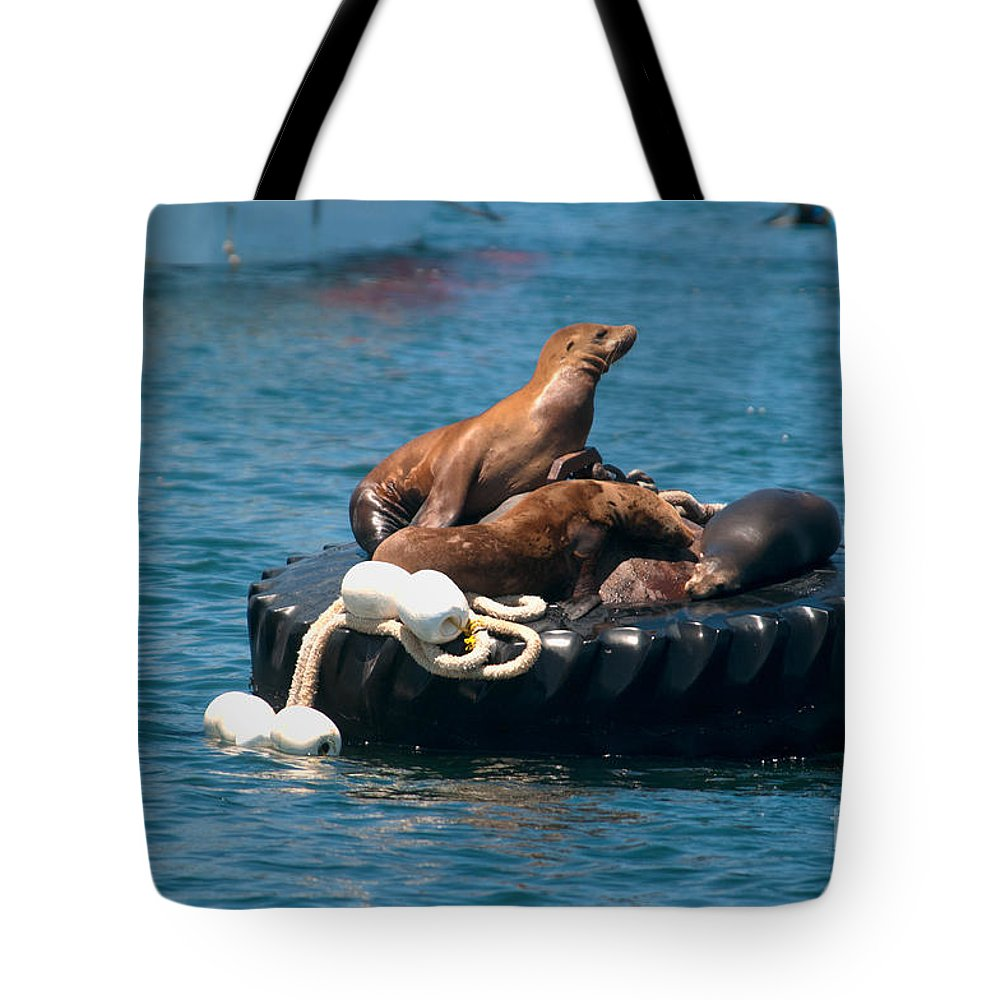 California Tote Bag featuring the digital art Monterey Harbour by Carol Ailles