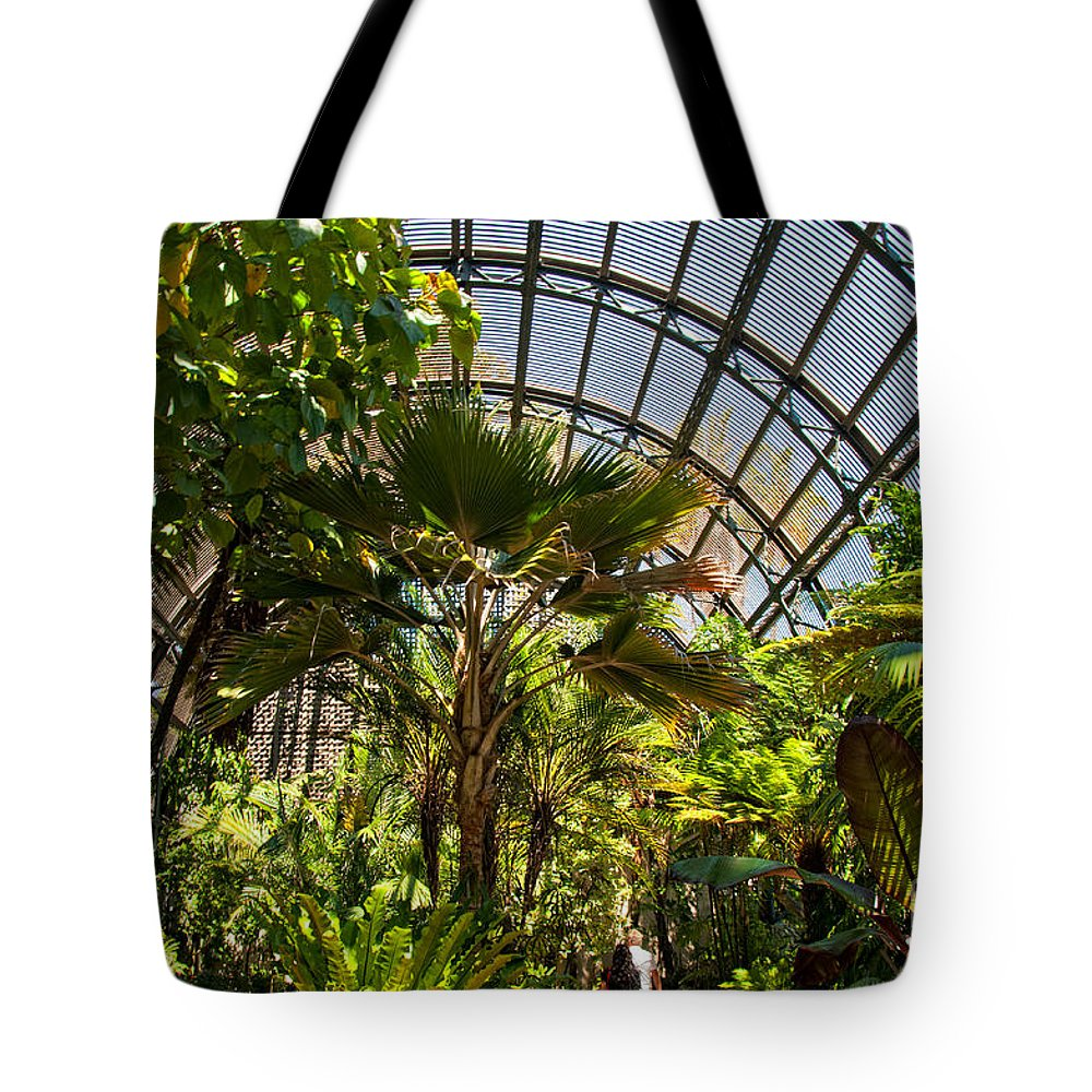 Balboa Park Tote Bag featuring the digital art Balboa Park San Diego by Carol Ailles