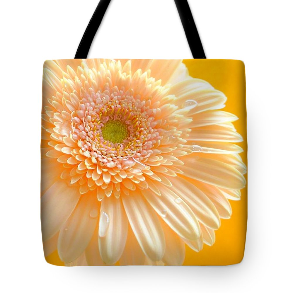 Gerbera Photographs Tote Bag featuring the photograph 1527-002c by Kimberlie Gerner