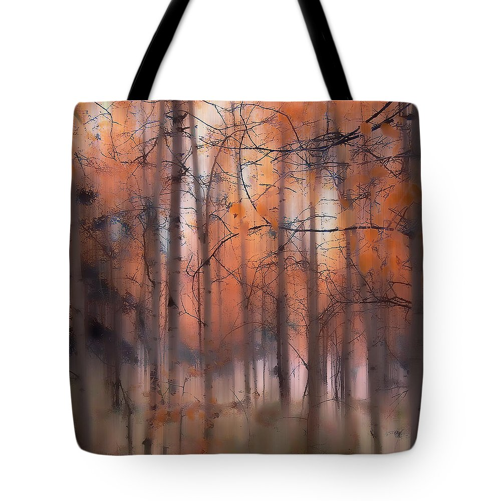 Aspen Tote Bag featuring the photograph 1942 by Peter Holme III
