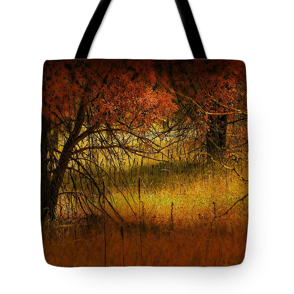 Landscape Tote Bag featuring the photograph 1969 by Peter Holme III