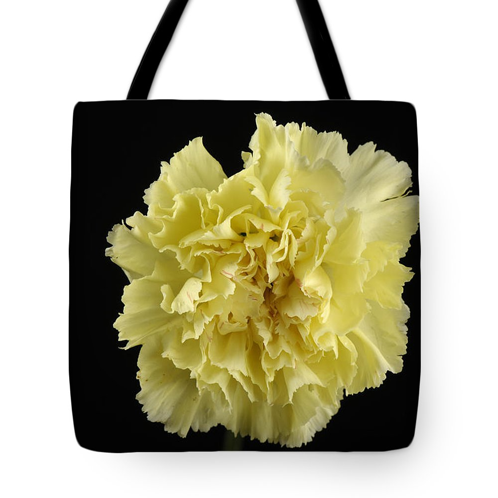 Photography Tote Bag featuring the photograph A Carnation Dianthus Caryophyllus by Joel Sartore