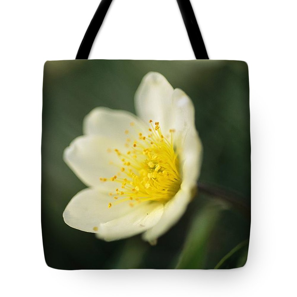 North America Tote Bag featuring the photograph A Close View Of A Wildflower In Yoho by Michael Melford
