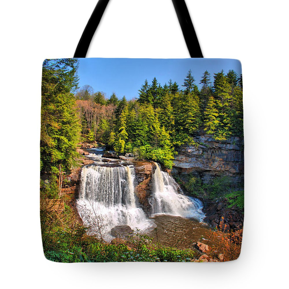 Blackwater Falls Tote Bag featuring the photograph Blackwater Falls Sp by Mary Almond
