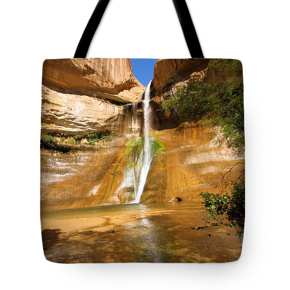 Lower Calf Creek Falls Tote Bag featuring the photograph Calf Creek Falls Canyon by Adam Jewell