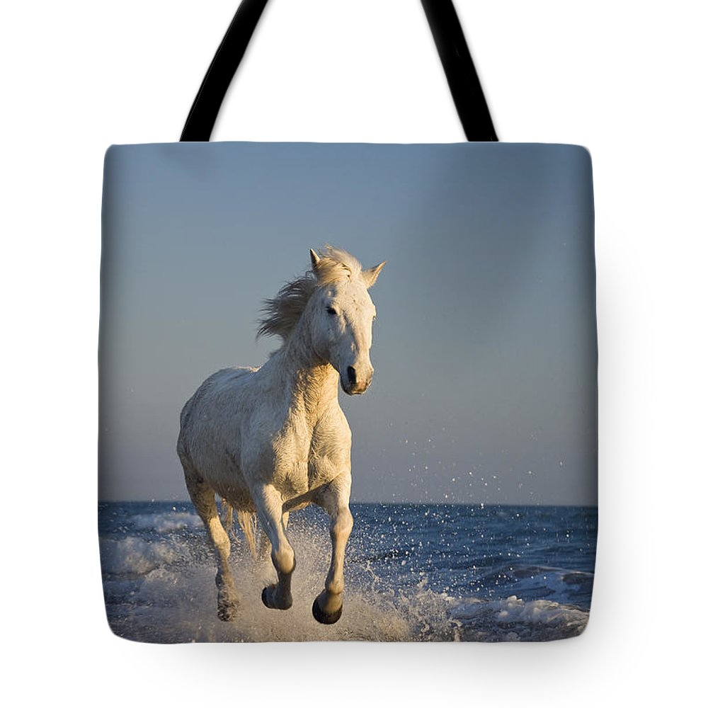 Mp Tote Bag featuring the photograph Camargue Horse Equus Caballus Running by Konrad Wothe