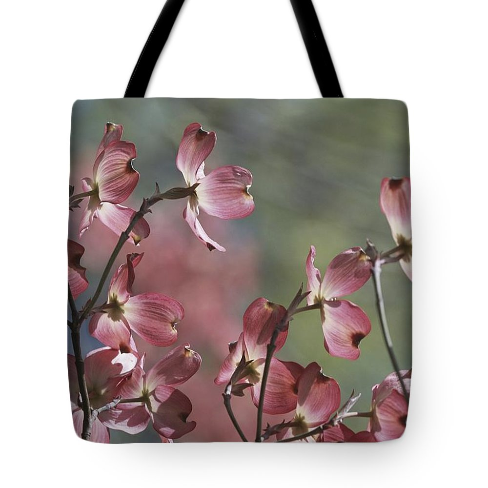 Scenes And Views Tote Bag featuring the photograph Close View Of Pink Dogwood Blossoms by Darlyne A. Murawski