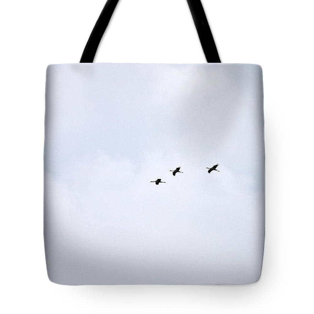 Siikaneva Tote Bag featuring the photograph Cranes by Jouko Lehto