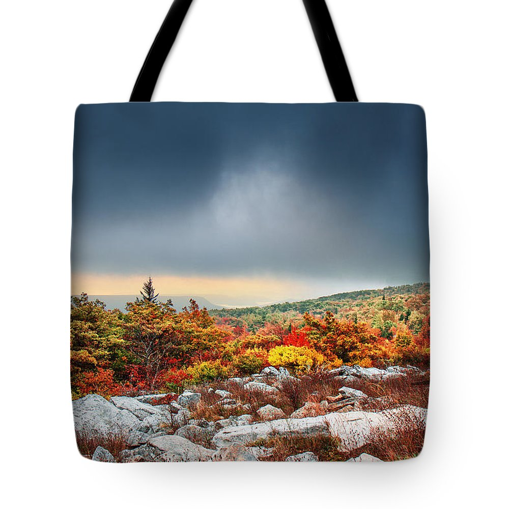 Dolly Sods Wilderness Tote Bag featuring the photograph Dolly Sods Wilderness by Mary Almond