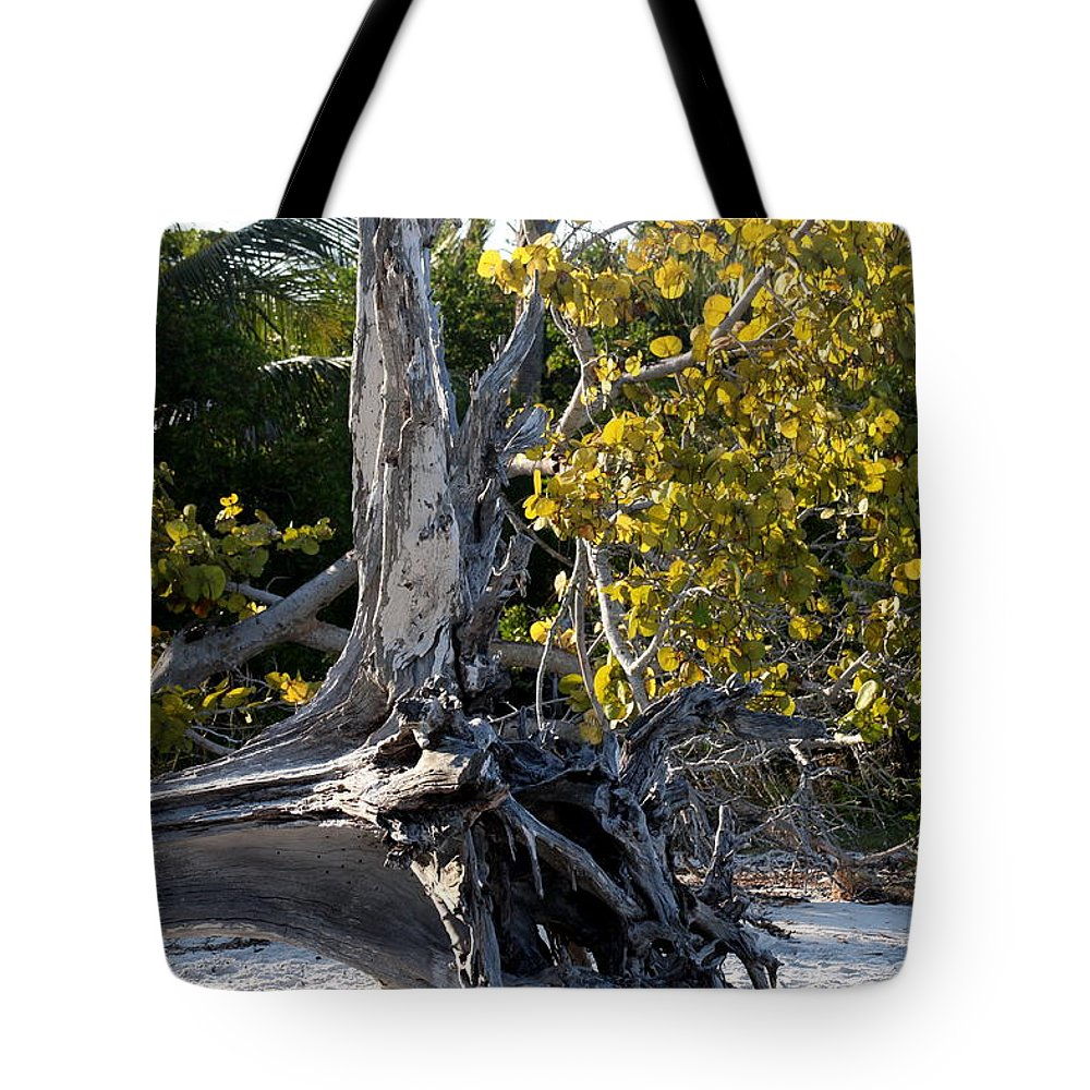 Driftwood Tote Bag featuring the photograph Driftwood On The Beach by Christiane Schulze Art And Photography