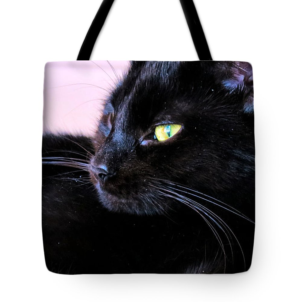 Cat Tote Bag featuring the photograph Green Eyes by Art Dingo
