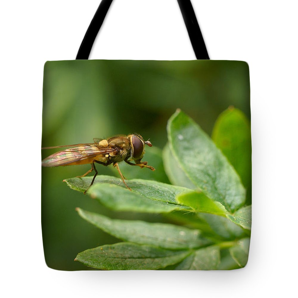 Hoverfly Tote Bag featuring the photograph Hoverfly by Jouko Lehto