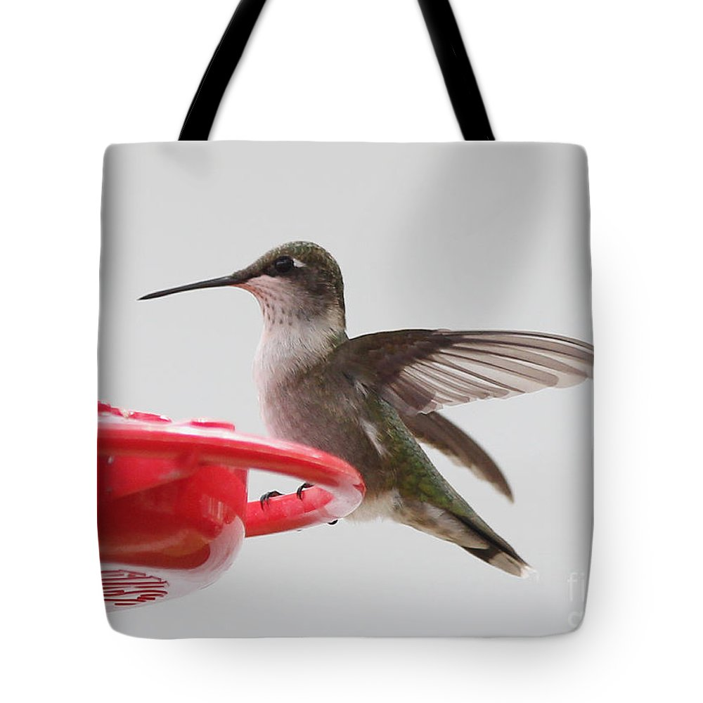 Hummingbirds Tote Bag featuring the photograph Hummingbird by Lori Tordsen