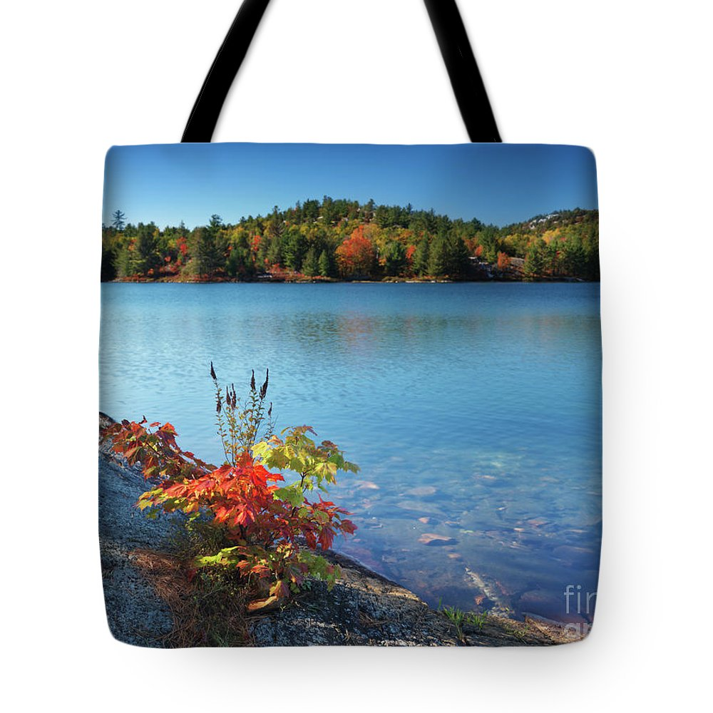 Lake Tote Bag featuring the photograph Killarney Provincial Park In Fall by Oleksiy Maksymenko
