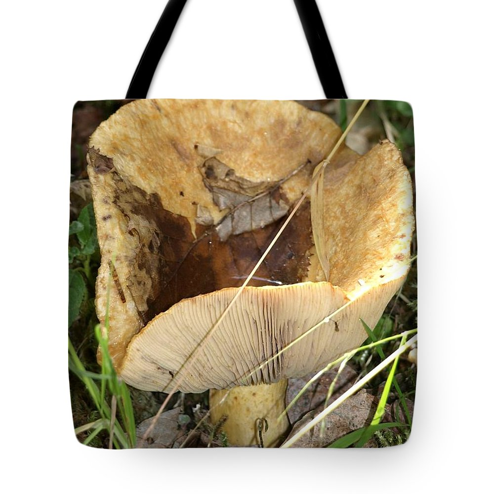 Mushroom Tote Bag featuring the photograph Mushroom by Jessica Foster