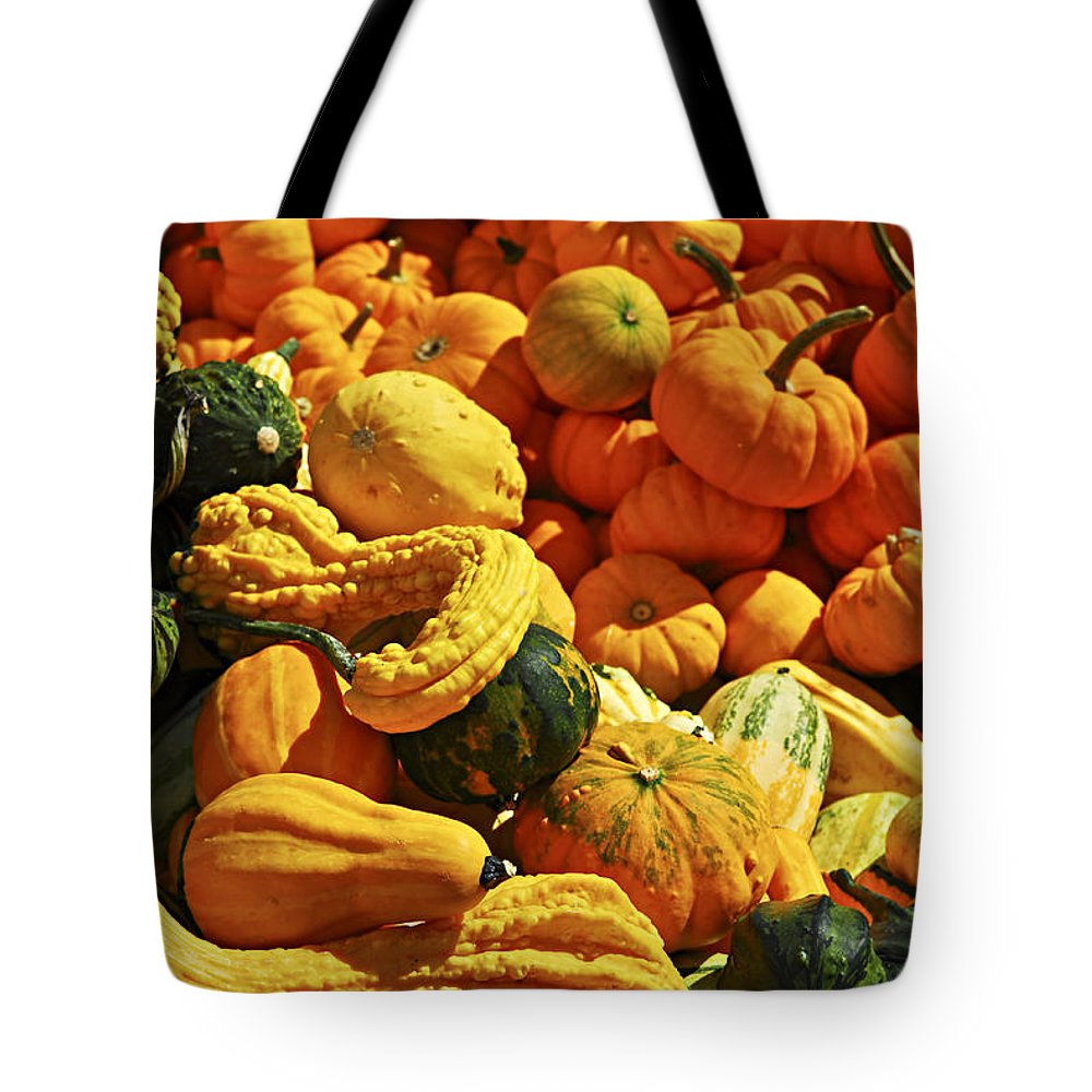 Pumpkin Tote Bag featuring the photograph Pumpkins And Gourds by Elena Elisseeva
