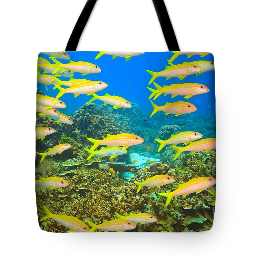 Andaman Sea Tote Bag featuring the photograph School Of Yellowfin Goatfish by MotHaiBaPhoto Prints