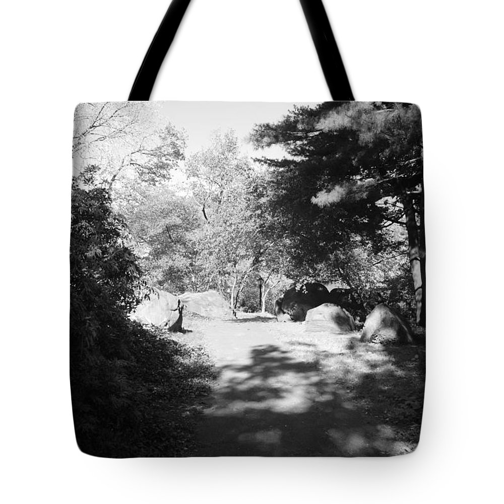 Central Park Tote Bag featuring the photograph Thru The Trees by Rob Hans