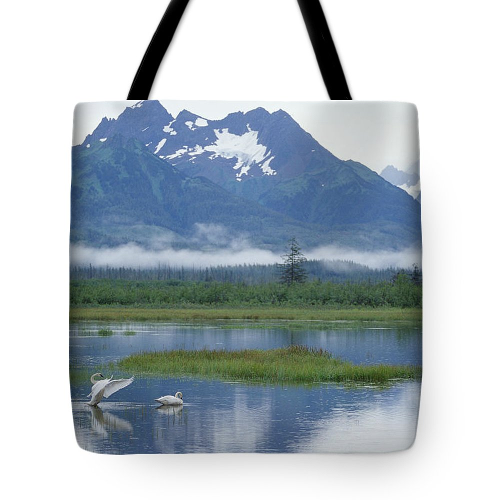 Alaska Tote Bag featuring the photograph Trumpeter Swan Cygnus Buccinator Pair by Michael Quinton