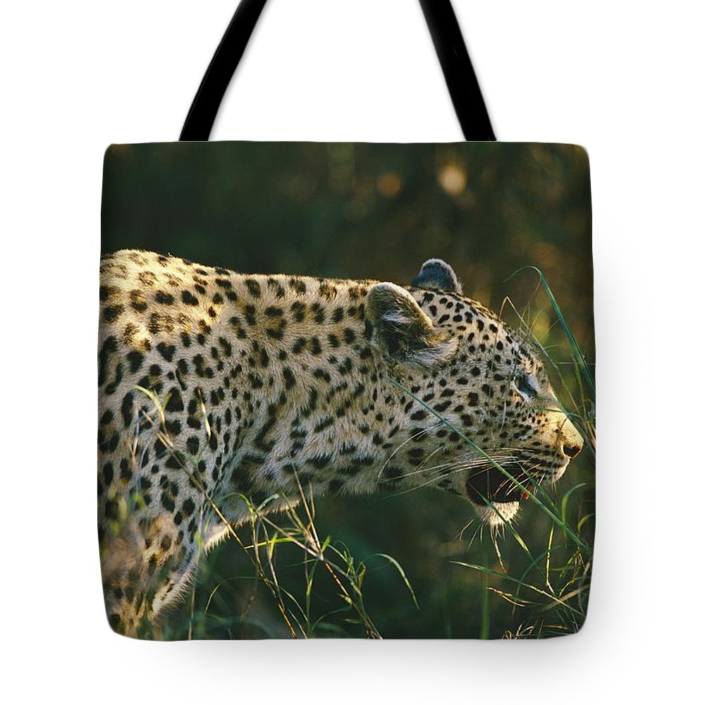 Tote Bag featuring the photograph Untitled by Nicole Duplaix