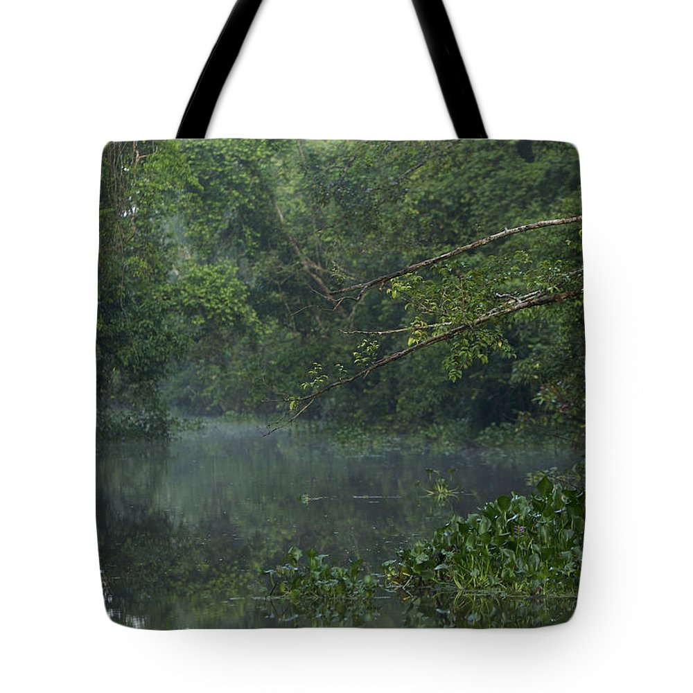 Borneo Tote Bag featuring the photograph View Of The Menangul River And Rain by Tim Laman