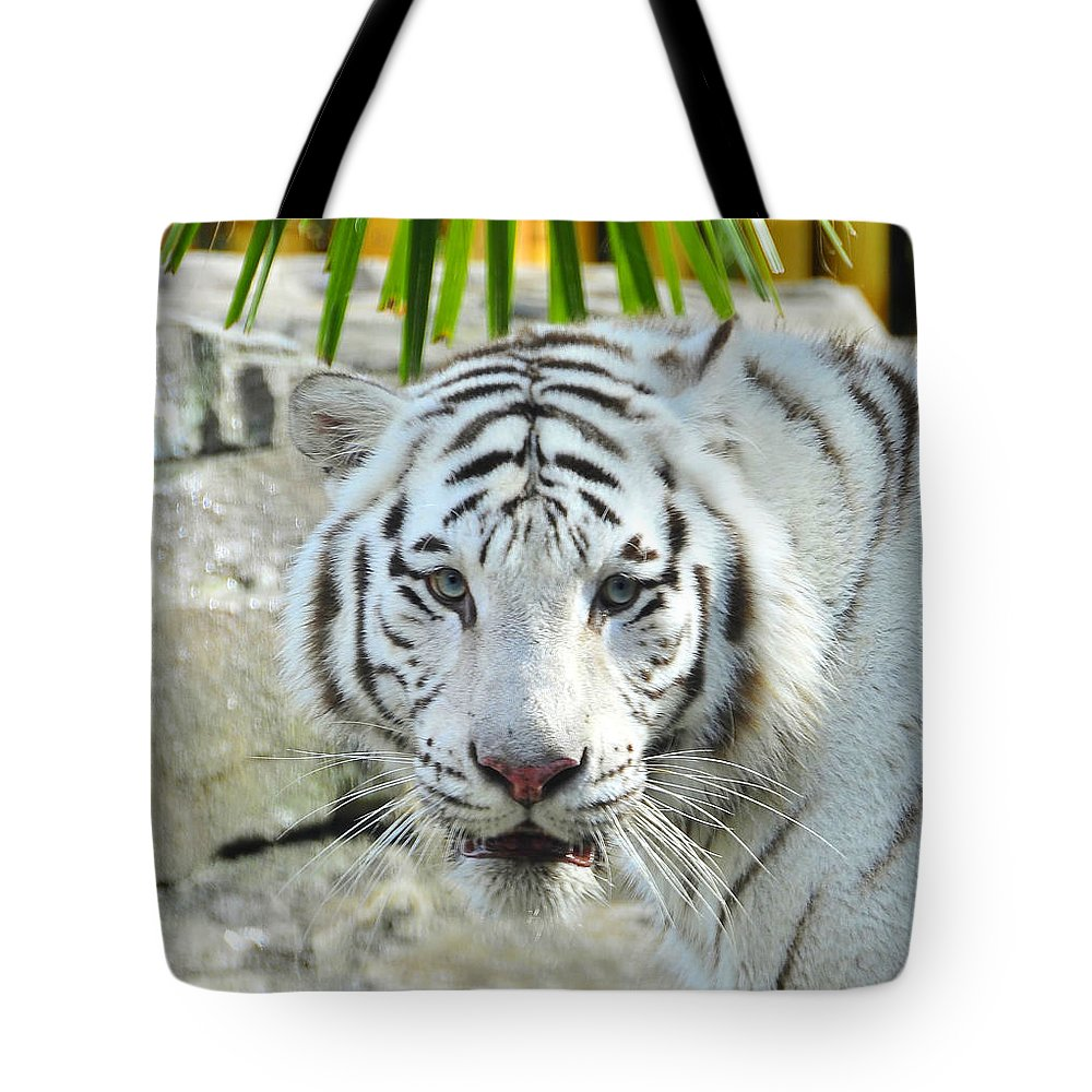 Fine Art Photography Tote Bag featuring the photograph White Tiger by David Lee Thompson