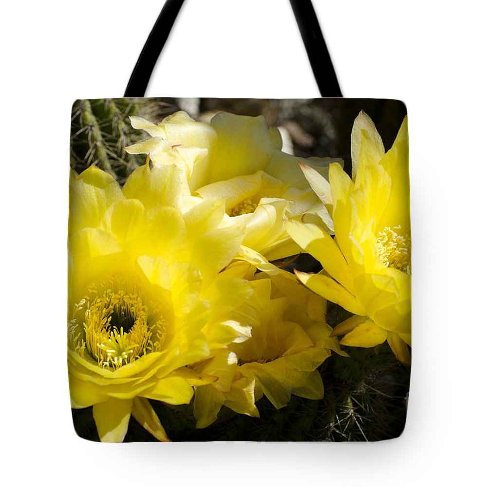 Cactus Tote Bag featuring the photograph Yellow Cactus Flowers by Jim And Emily Bush