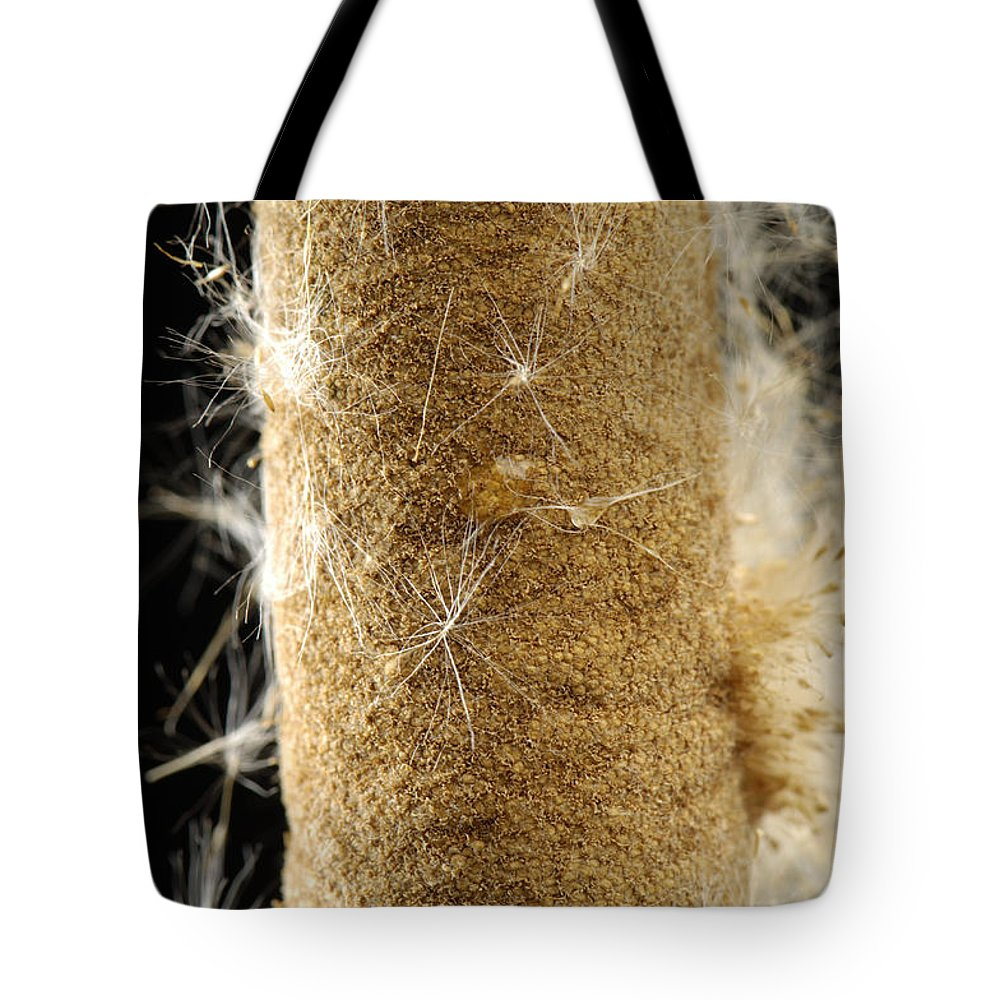 Photography Tote Bag featuring the photograph A Cattail Typha Latifolia Disperses by Joel Sartore