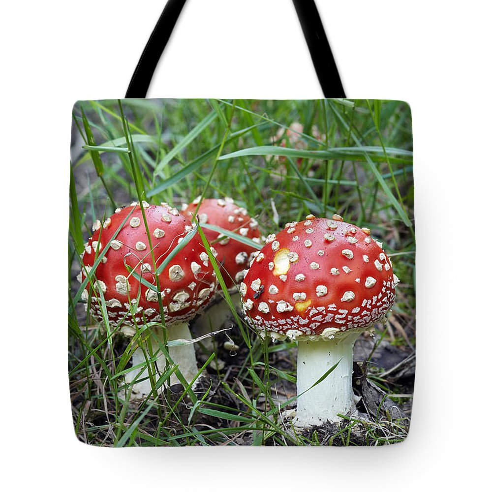 Agaric Tote Bag featuring the photograph Amanita Muscaria by Michal Boubin
