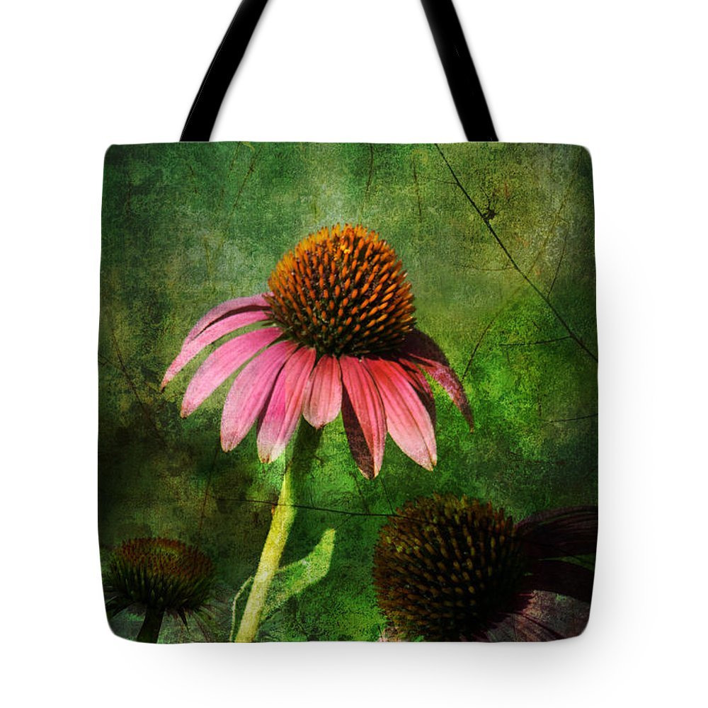 Coneflower Tote Bag featuring the photograph 3 Amigos Echinacea Coneflower Grunge Art by Kathy Clark