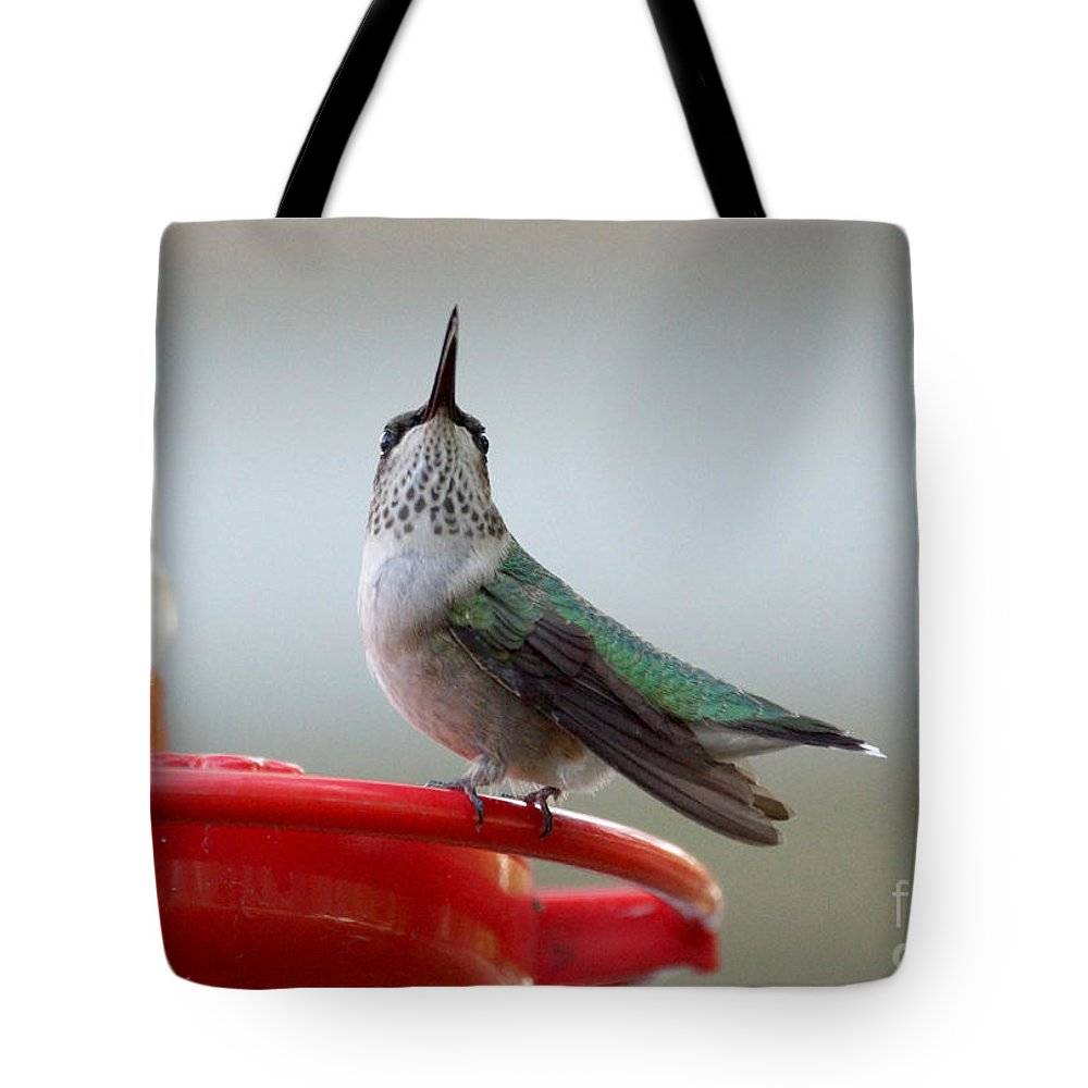 Birds Tote Bag featuring the photograph Hummingbird by Lori Tordsen