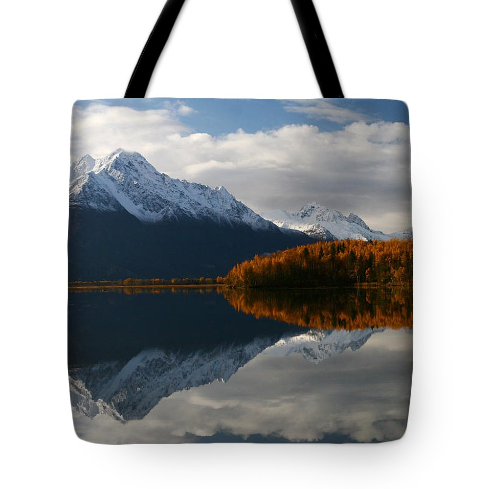 Doug Lloyd Tote Bag featuring the photograph Morning Light by Doug Lloyd