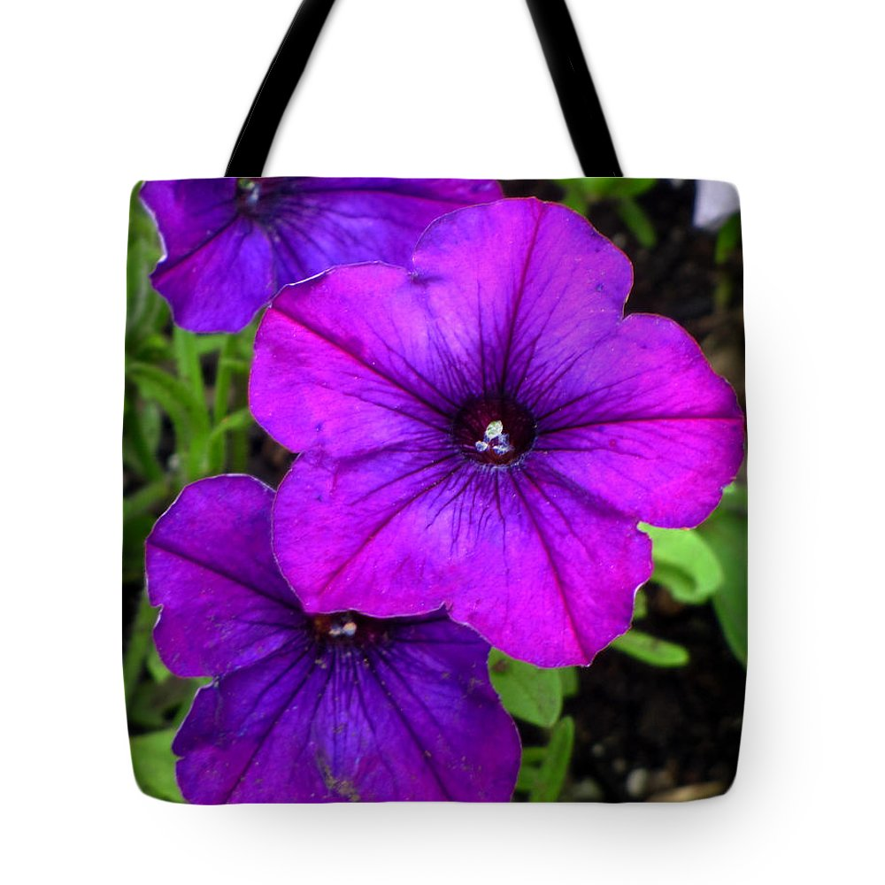 Flowers Tote Bag featuring the photograph 3 Petunias by Denise Keegan Frawley