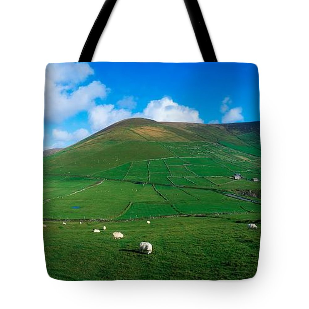 Coast Tote Bag featuring the photograph Slea Head, Dingle Peninsula, Co Kerry by The Irish Image Collection