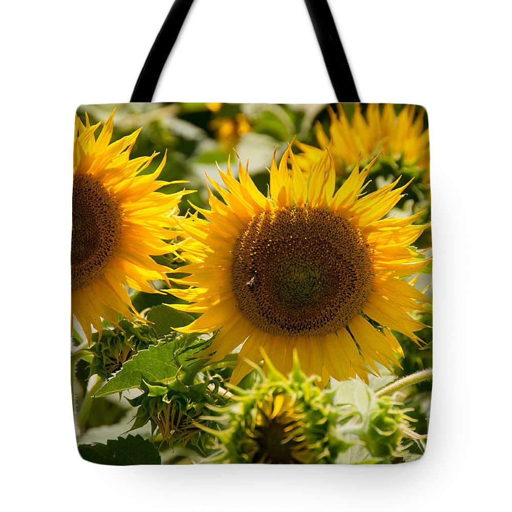 California Tote Bag featuring the digital art Sunflowers by Carol Ailles