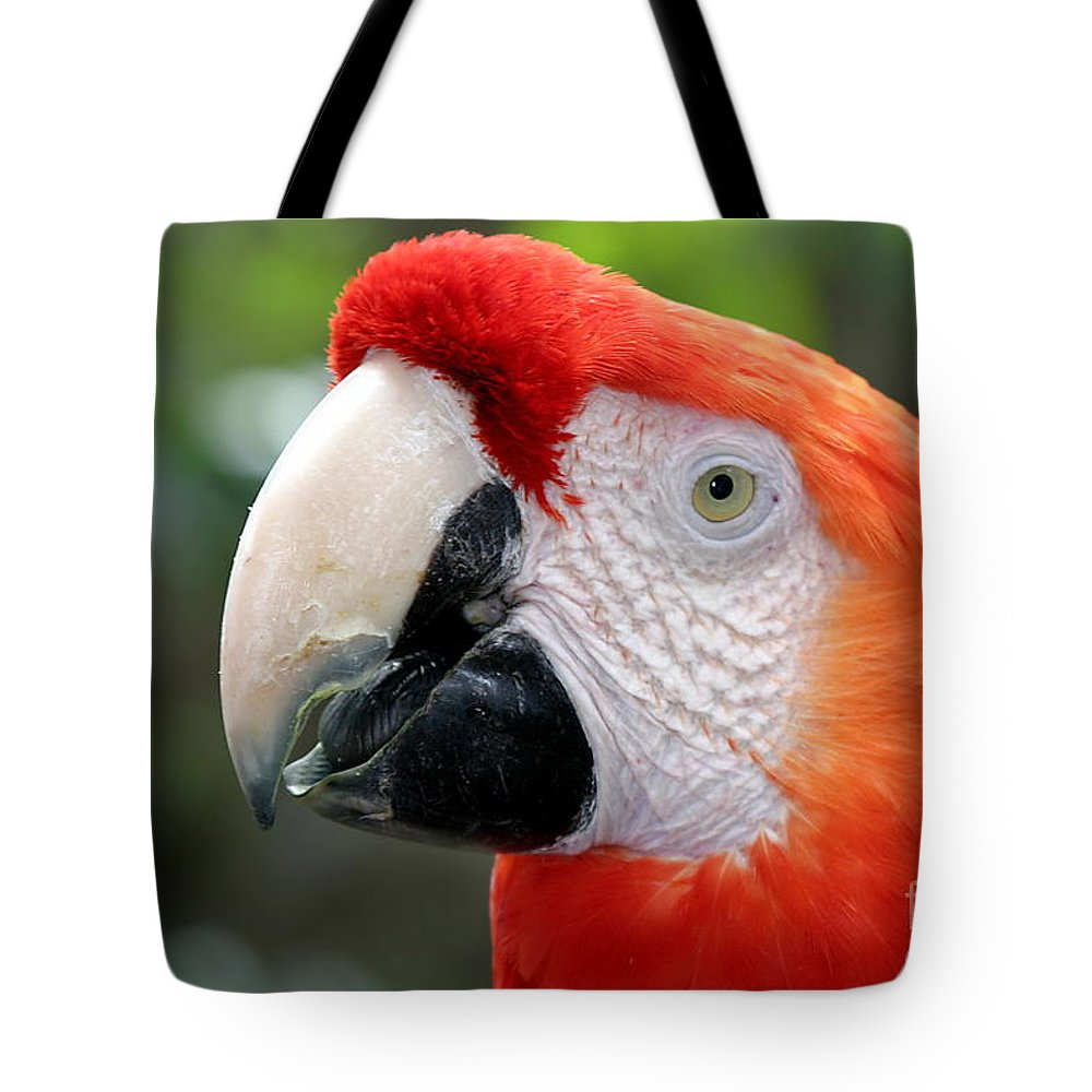 Red Tote Bag featuring the photograph Scarlet Macaw by Henrik Lehnerer