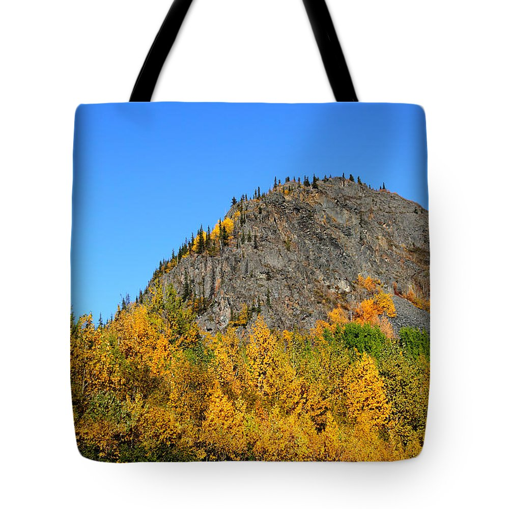 Doug Lloyd Tote Bag featuring the photograph Fall Beauty by Doug Lloyd