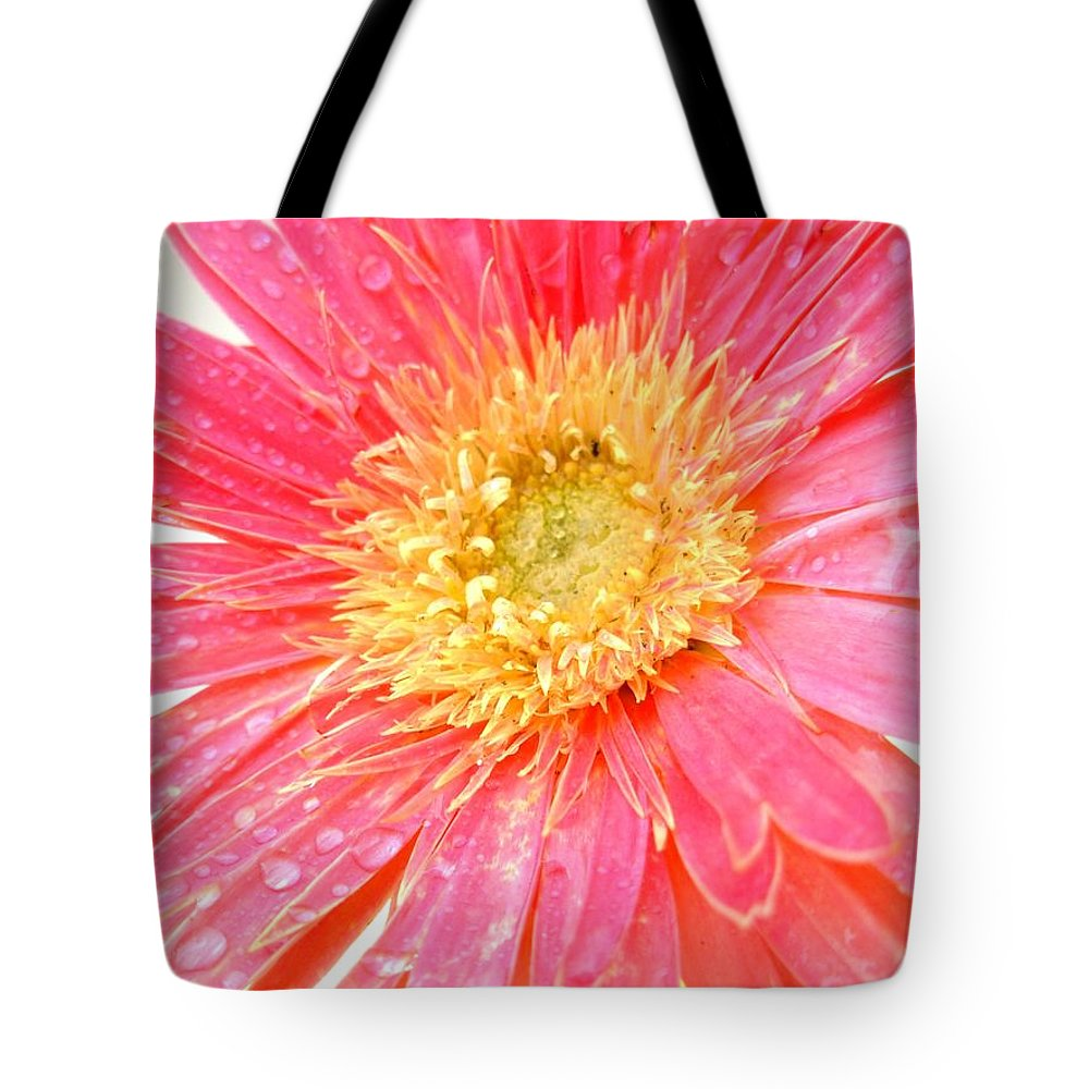 Gerbera Photographs Tote Bag featuring the photograph 5469c by Kimberlie Gerner