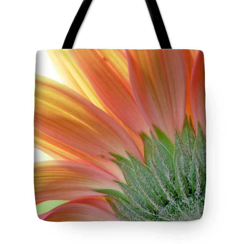 Gerbera Photographs Tote Bag featuring the photograph 62582 by Kimberlie Gerner