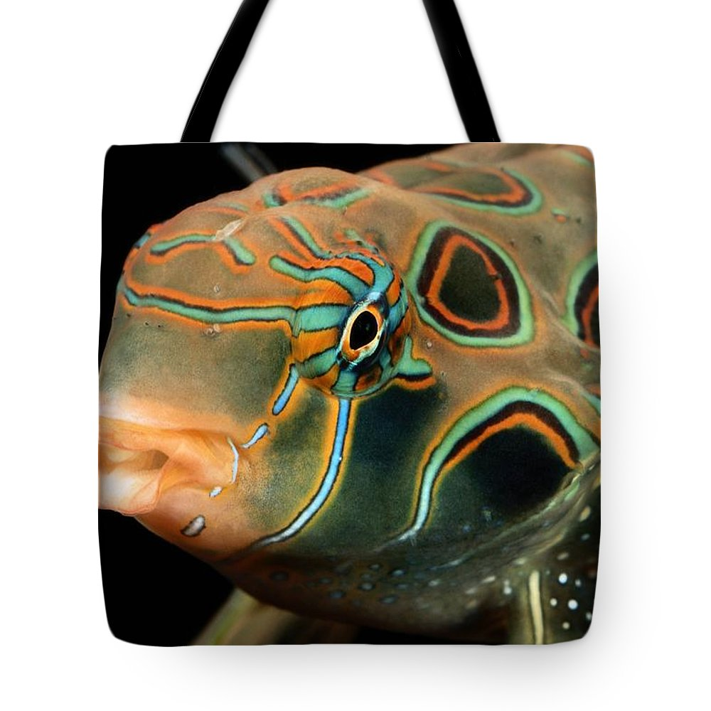 underwater Photography Tote Bag featuring the photograph A Close-up View Of A Tropical Fish by George Grall