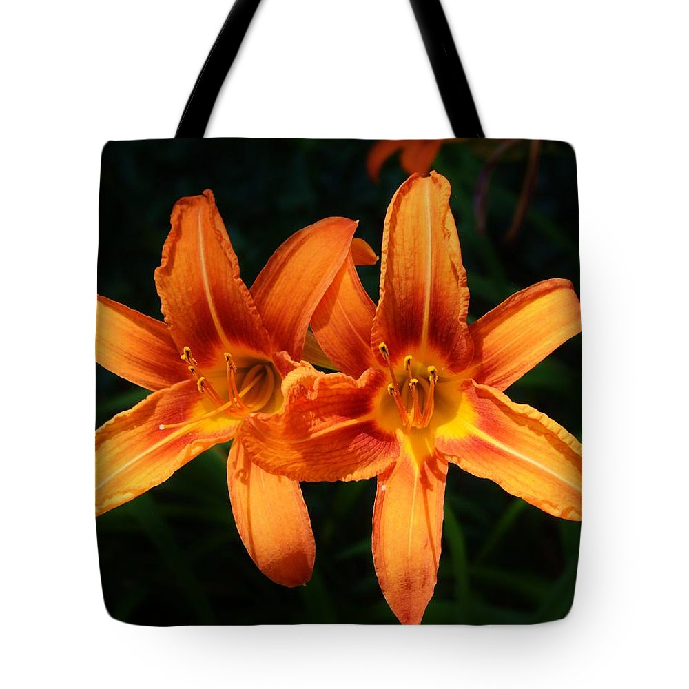 Background Tote Bag featuring the photograph A Couple Of Beauties by William Bartholomew