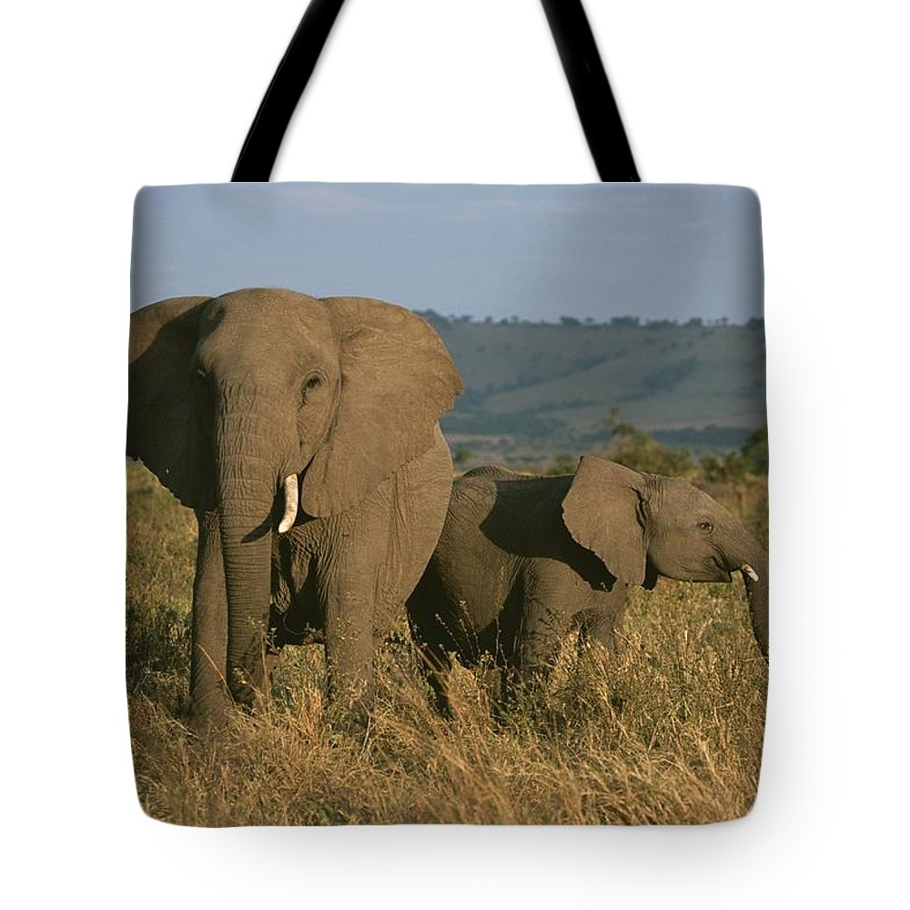 Africa Tote Bag featuring the photograph A Female Elephant With Her Baby by Roy Toft