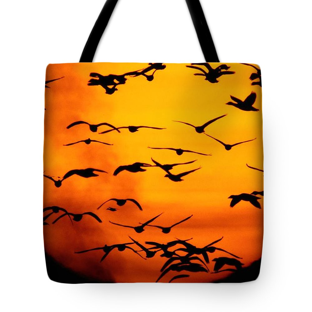 Animals Tote Bag featuring the photograph A Flock Of Geese Is Silhouetted by Joel Sartore