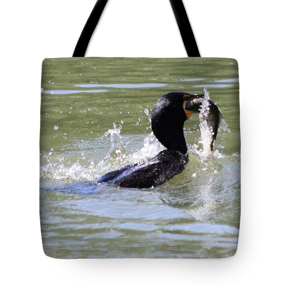 Cormorant Tote Bag featuring the photograph A Fresh Meal by Shane Bechler