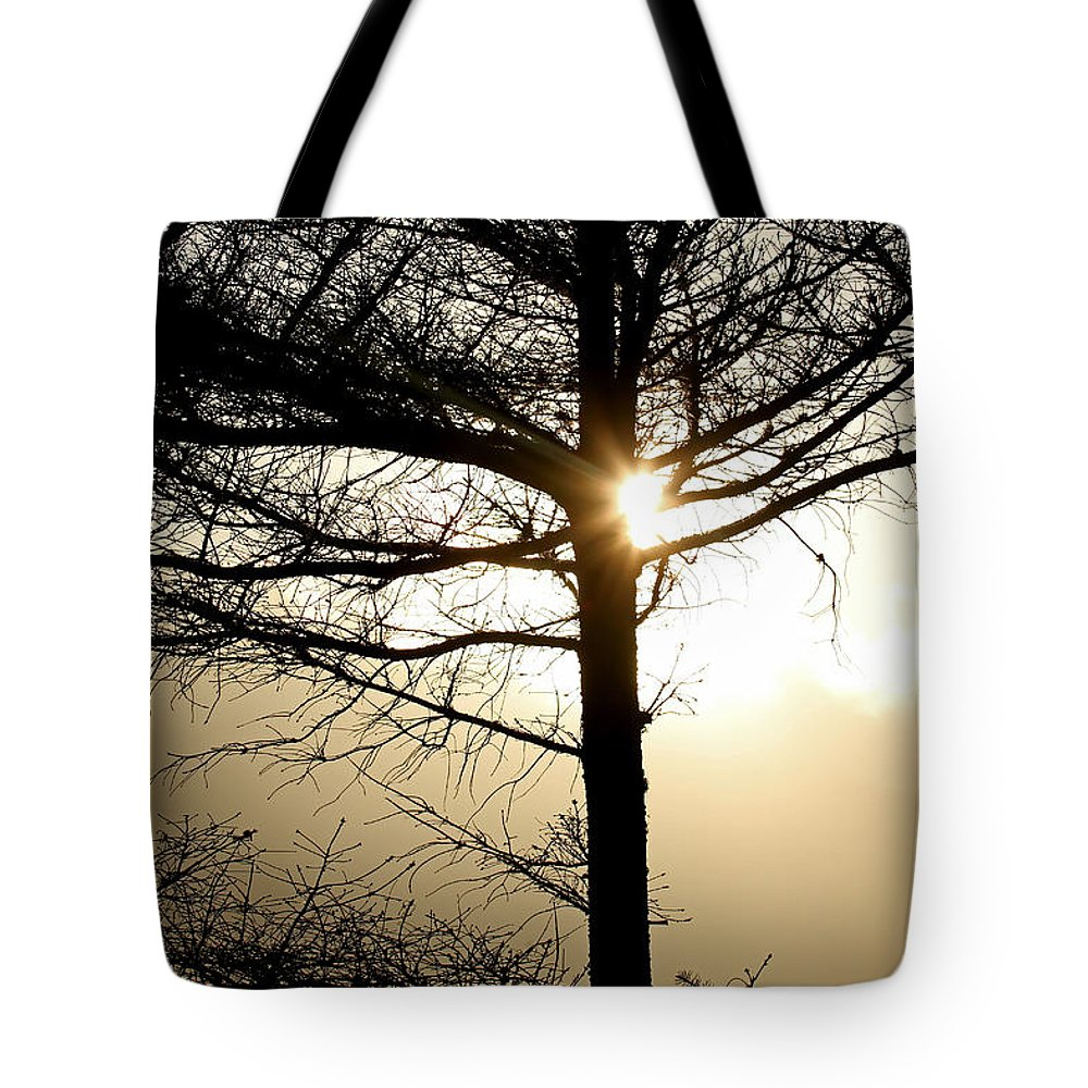 Sunset Tote Bag featuring the photograph A Golden Day by Marie Jamieson