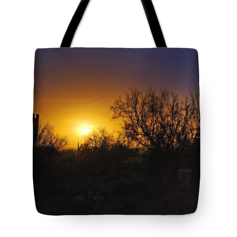 Sunrise Tote Bag featuring the photograph A Golden Saguaro Sunrise by Saija Lehtonen